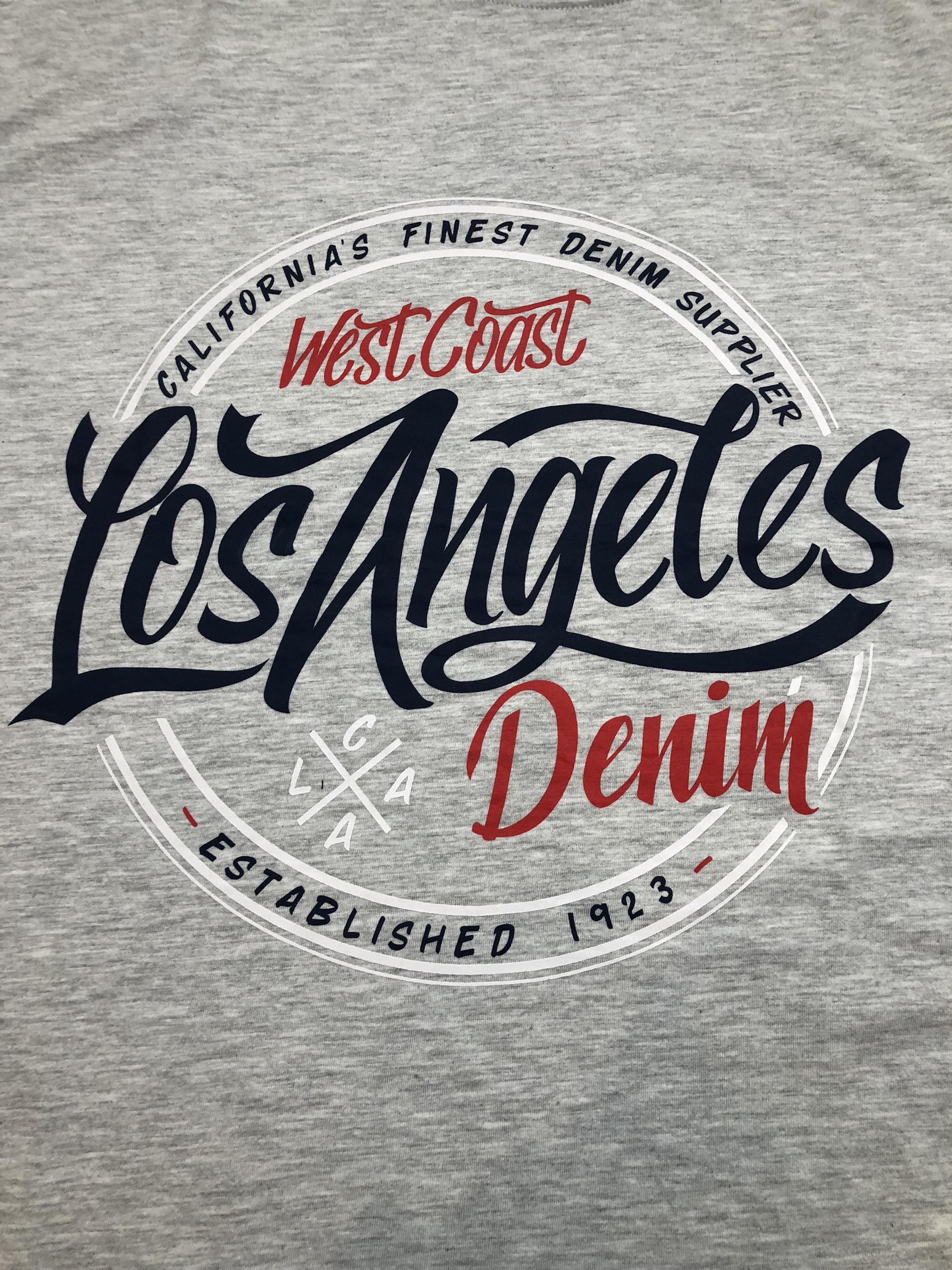 la print crew neck t-shirt (grey)